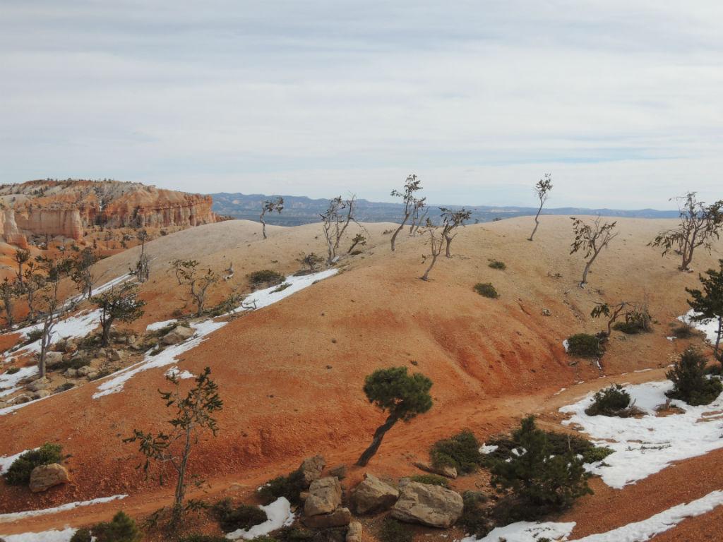 Bryce Canyon Winter20