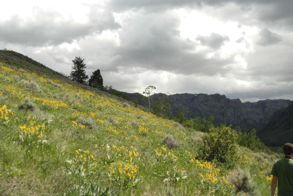 Wind River Range10