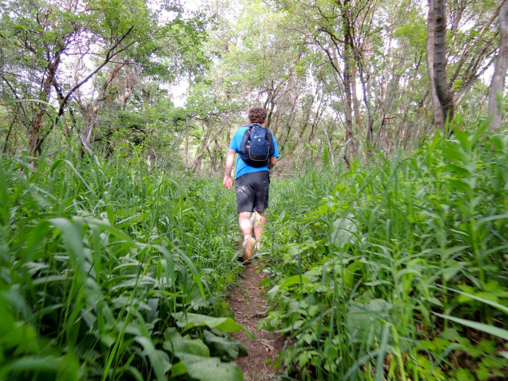 Kenney Creek Trail3