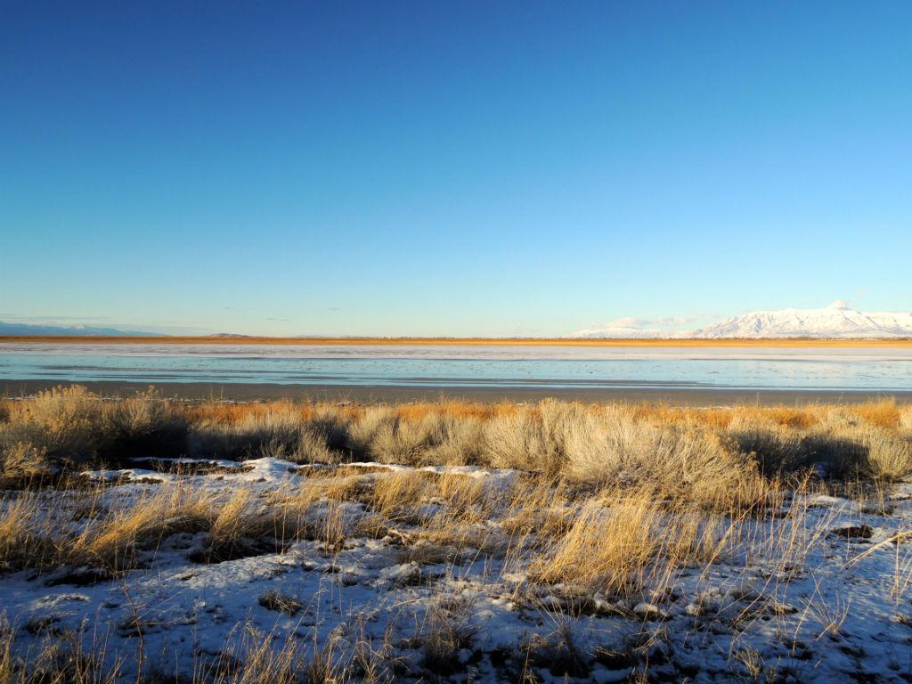 Antelope Island1