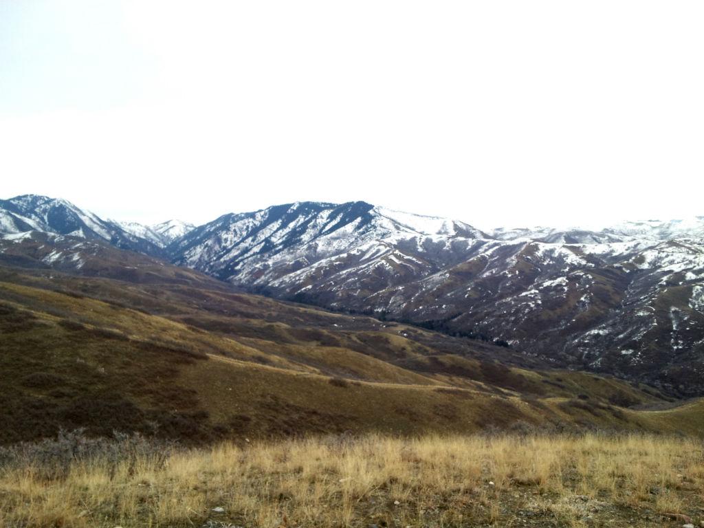 Wild Rose Trail14