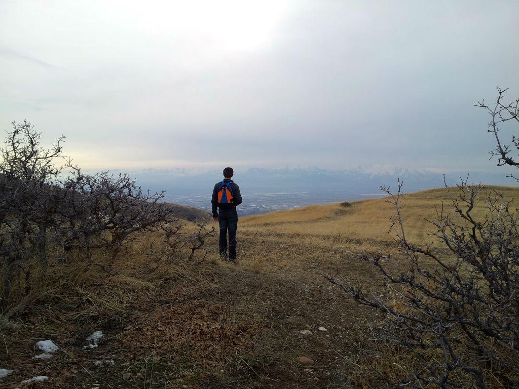 Wild Rose Trail9