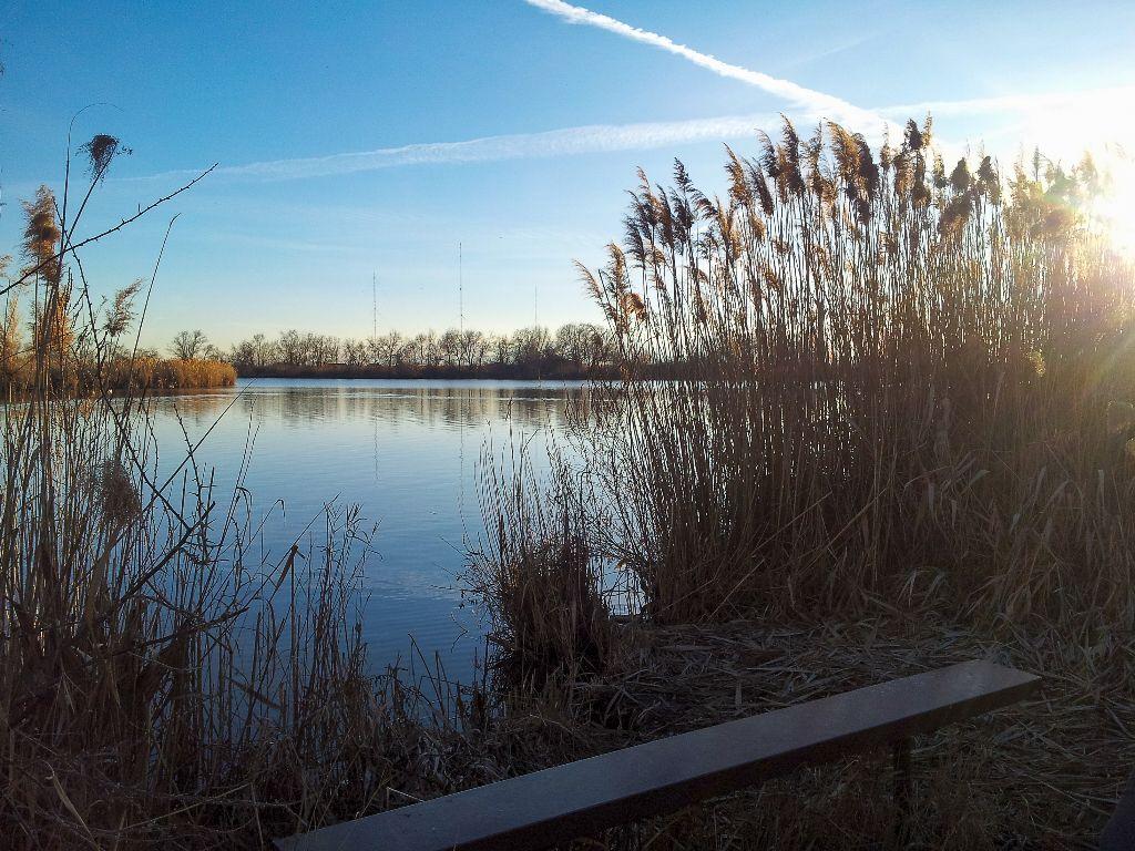 Beyond Pond18
