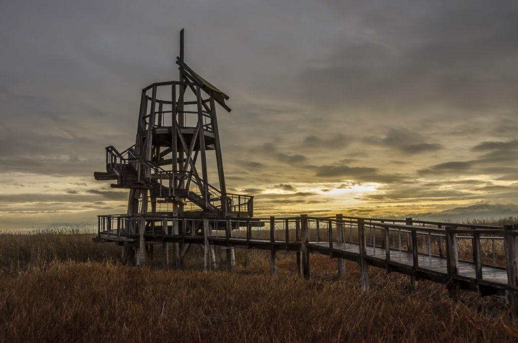 Shorelands Preserve10