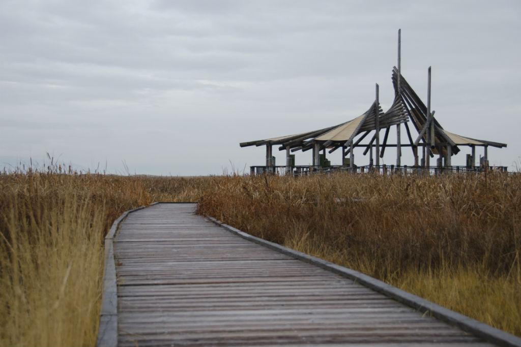 Shorelands Preserve3