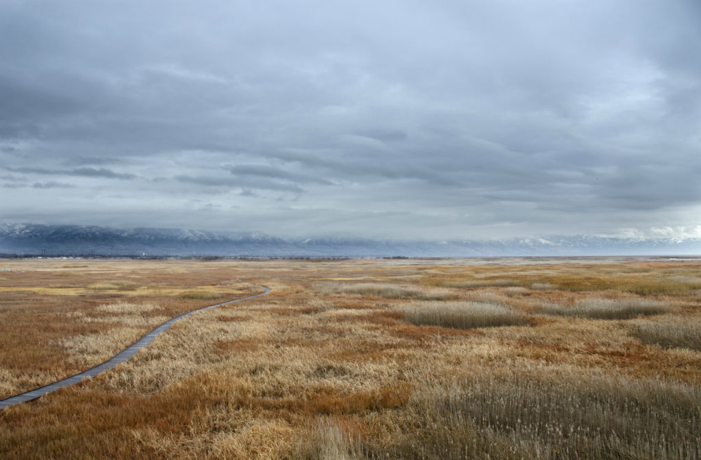 Shorelands Preserve8